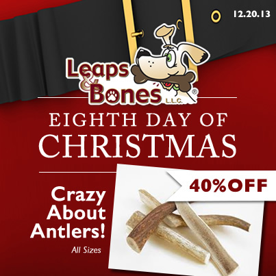 Eighth Day of Christmas - 40%OFF All Antlers
