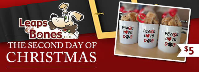 On The Second Day of Christmas: $5 Mug & Biscuits