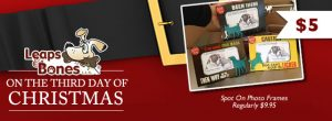 On The Third Day of Christmas: $5 Spot On Frames