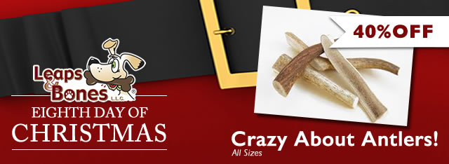 On The Eighth Day of Christmas: All Antlers 40% OFF