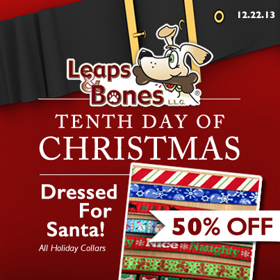 Tenth Day of Christmas: 50% OFF Holiday Collars