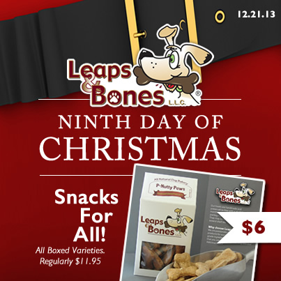 Ninth Day of Christmas: $6 Boxed Leaps & Bones Treats